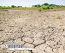 И трава не расти: что не так с землей для астраханских многодетных семей