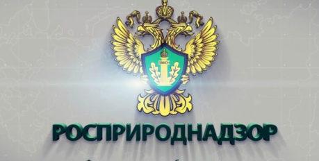 В Астрахани новый  начальник Росприроднадзора