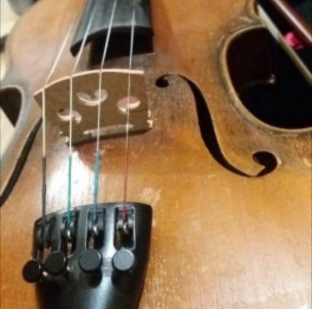 В Астрахани найдена скрипка с биркой Страдивари: подробности