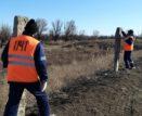 В Астраханской области защищают жд-пути от безнадзорного домашнего скота