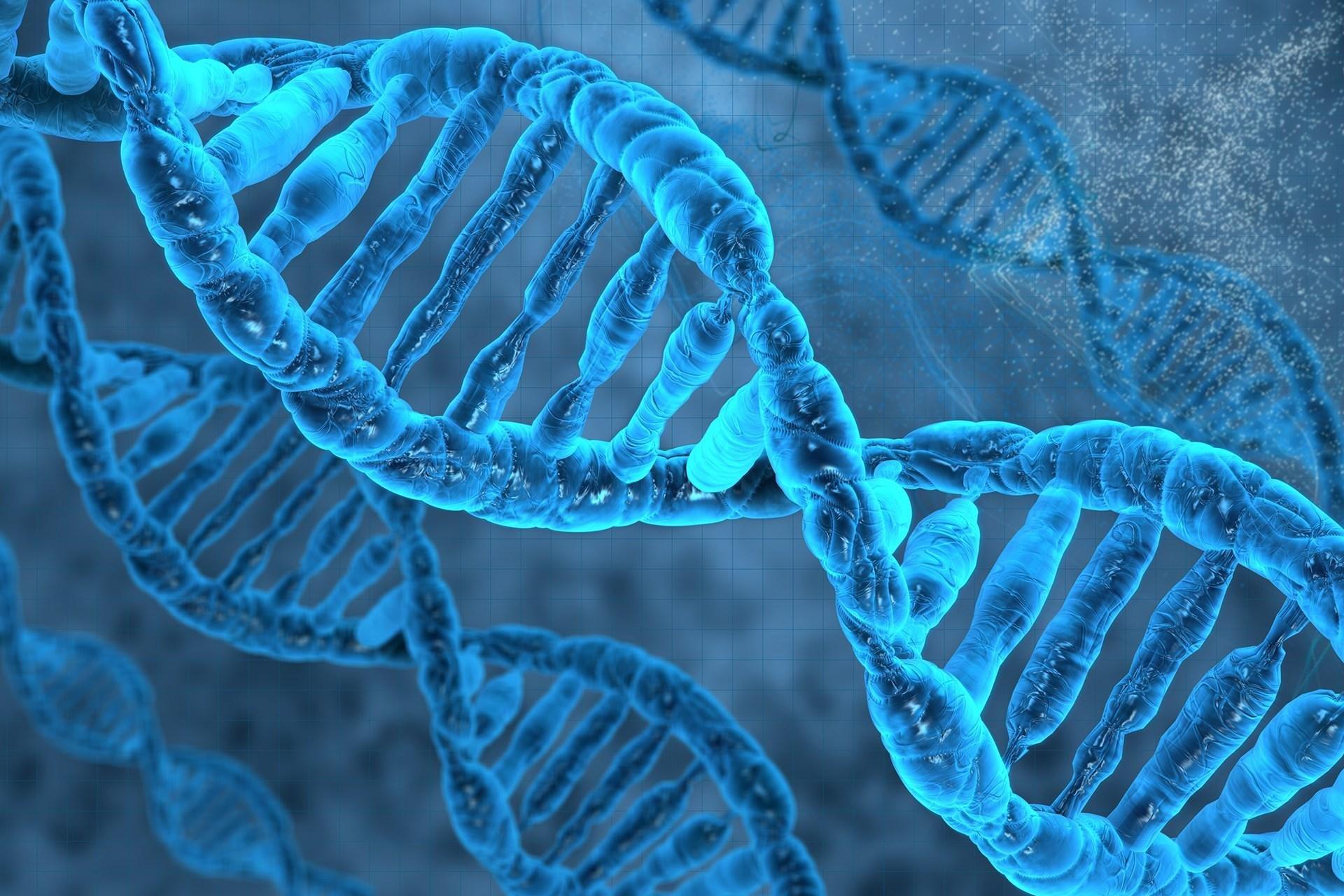 Астраханец сделал тест ДНК, чтобы не платить алименты ребёнку