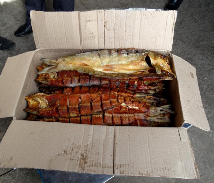 Астраханские полицейские изъяли тонны немаркированной рыбной продукции