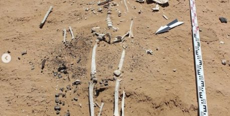 201 древний артефакт нашли астраханские археологи в Харабалинском районе области