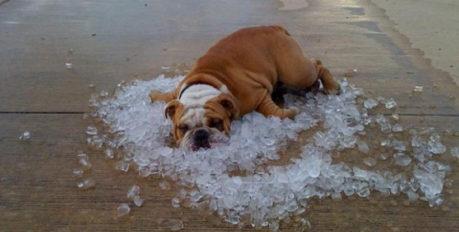 Астраханцев ждёт «адское» солнце: как обезопасить себя при сильной жаре