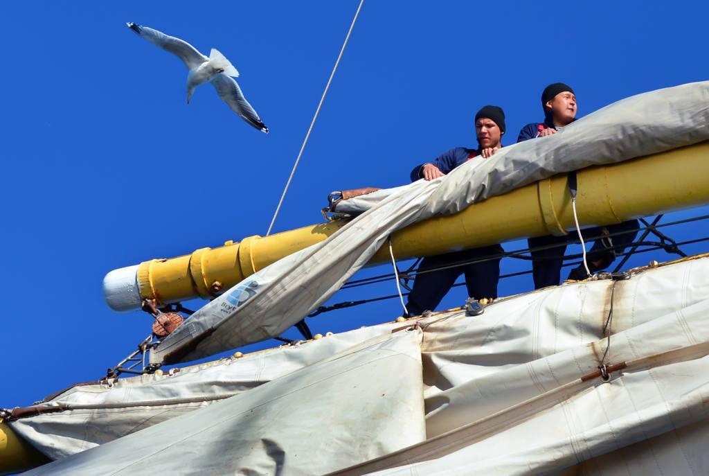 «Море — оно не для всех»: астраханский моряк на «Крузенштерне»