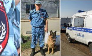 В Астрахани служебная собака Ренесми помогла найти пропавший велосипед