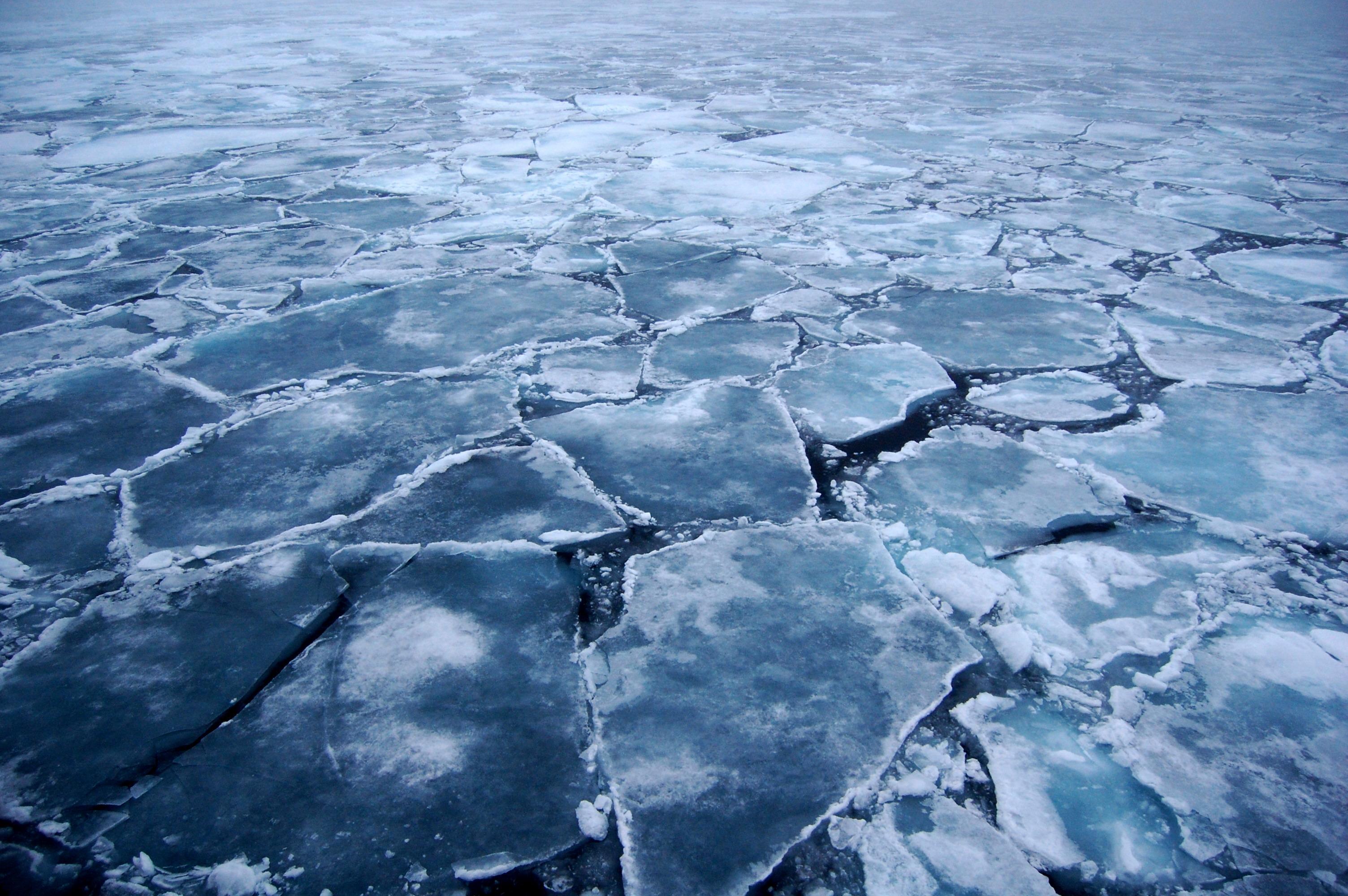 Спасатели нашли тело маленькой астраханки, провалившейся под лед